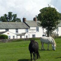 George and Dragon dog-friendly bar and rooms, Cumbria - 1FC58735-BCCF-4415-AAFE-00355EF11809.jpeg