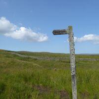 A67 Remote Reservoir dog walk and picnic spot, County Durham - P1020410.JPG