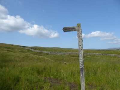 A67 Remote Reservoir dog walk and picnic spot, County Durham - Driving with Dogs