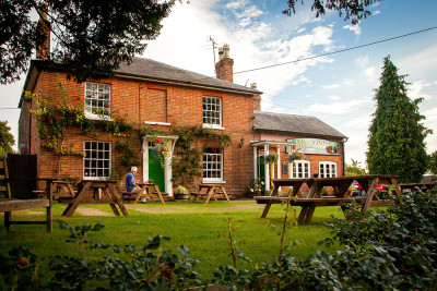South Downs dog walk and dog-friendly pub, Hampshire - Driving with Dogs