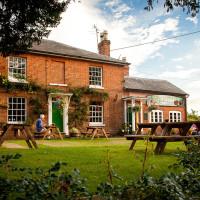 South Downs dog walk and dog-friendly pub, Hampshire - Hampshire dog-friendly pub and dog walk