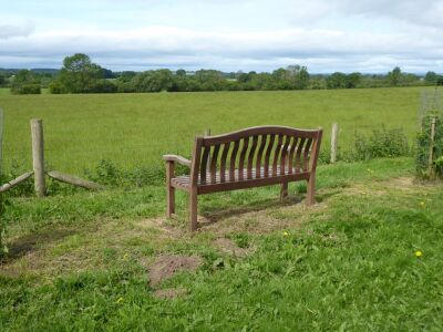 Dog-friendly refreshments and dog walk just off the A19, North Yorkshire - Driving with Dogs