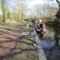 Dog-friendly pub and dog walk near Kingswinford, Staffordshire - Staffordshire dog-friendly pub and dog walk
