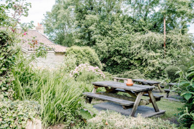 A38 Woodland walk and charming village inn, Somerset - Driving with Dogs