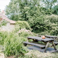 A38 Woodland walk and charming village inn, Somerset - A38 dog-friendly pub and dog walk.jpg