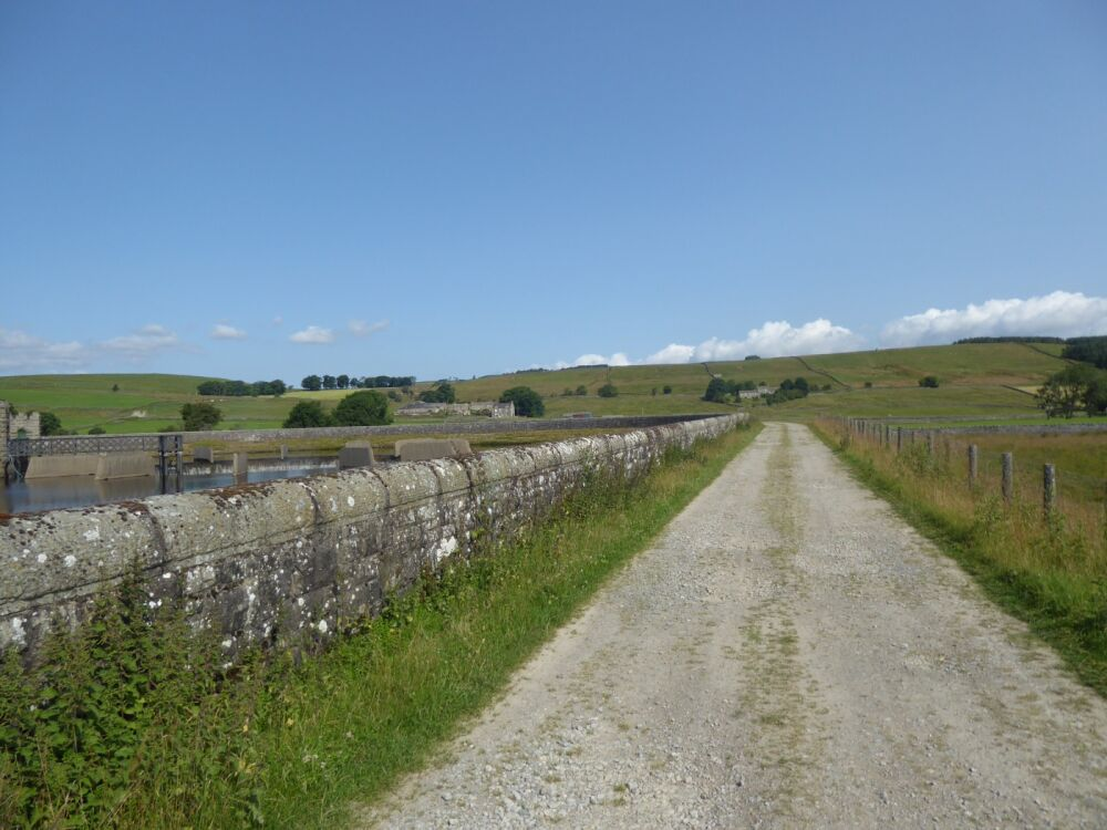 A67 Remote Reservoir dog walk and picnic spot, County Durham - P1020405.JPG