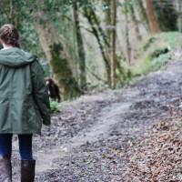Cotehele Quay to Lower Kelly dog walk, Cornwall - 2018-04-07-5542.jpg