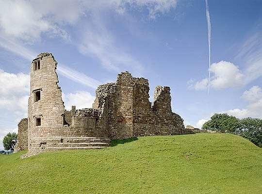 A66 dog walk in the Pennines, Cumbria - Cumbria dog walk