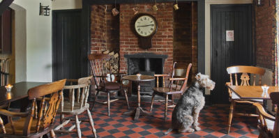 A30 dog-friendly pub and dog walk near Basingstoke, Hampshire - Driving with Dogs
