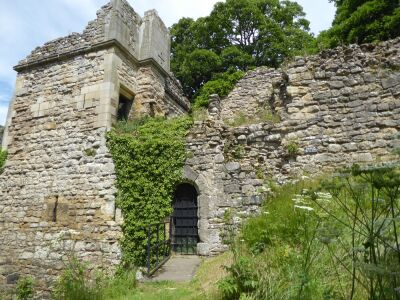 Dog-friendly castle, shops and pubs, North Yorkshire - Driving with Dogs