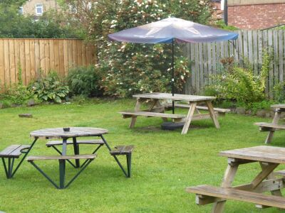 Morpeth dog-friendly pub and dog walk, Northumberland - Driving with Dogs