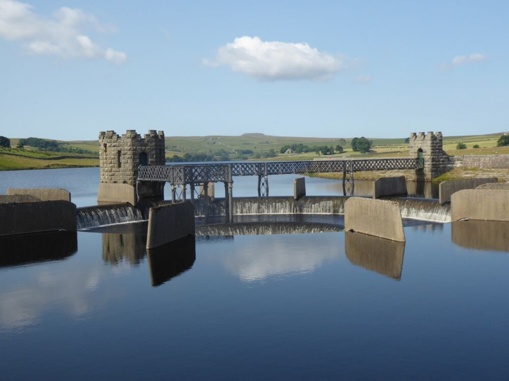 A67 Remote Reservoir dog walk and picnic spot, County Durham - P1020406.JPG