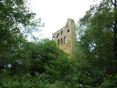Castle ruins dog walk and country pub in the Vale of York, North Yorkshire - Driving with Dogs