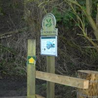 A303 Dog-friendly pub with B&B and a dog walk from the door, Somerset - Somerset dog walks.jpg