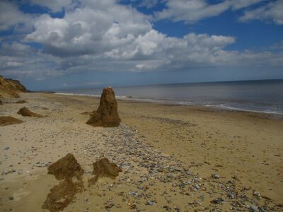 The hidden quiet beach and cliffs, Suffolk - Driving with Dogs