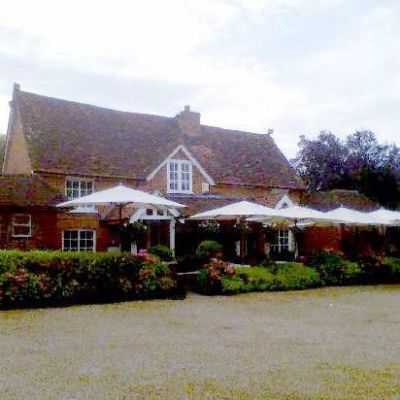 A330 dog friendly pub near Bracknell, Berkshire - Driving with Dogs