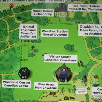 Family fun and dog walk, Pembrokeshire, Wales - Dog walks in Wales