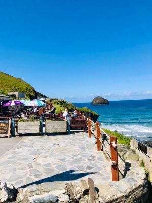 Dog-friendly pub near Tintagel, Cornwall - Driving with Dogs
