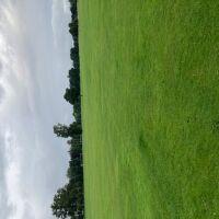 North Inch park and garden, Scotland - D836008D-E8DB-4E3E-91FA-9CB0F2548979.jpeg