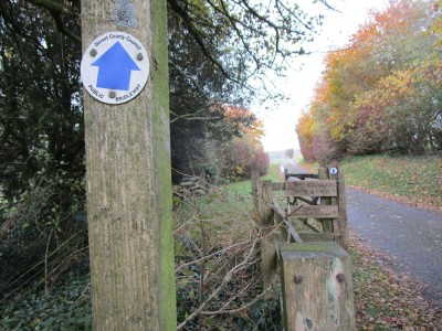 A35 dog walk and traditional dog-friendly pub, Dorset - Driving with Dogs
