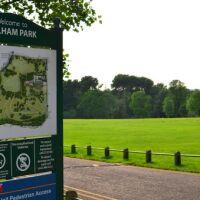 River Yare at Earlham Park dog walk Norwich, Norfolk - earlham.jpg