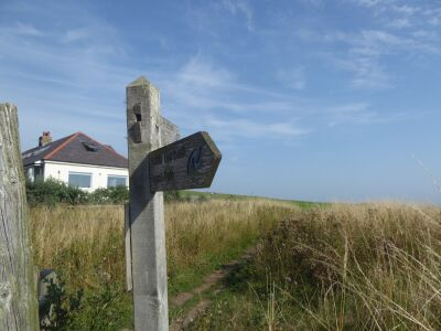 340 Dog-friendly pub, beach and dog walks, Northumberland - Driving with Dogs
