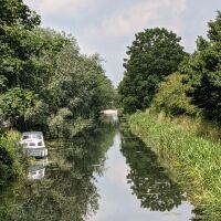 Heybridge Basin circular dog walk, Essex - PXL_20210624_105659168.jpg
