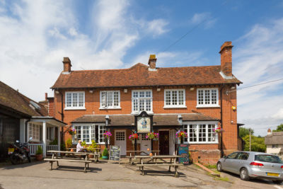 M27 dog-friendly pub and dog walk in the New Forest, Hampshire - Driving with Dogs