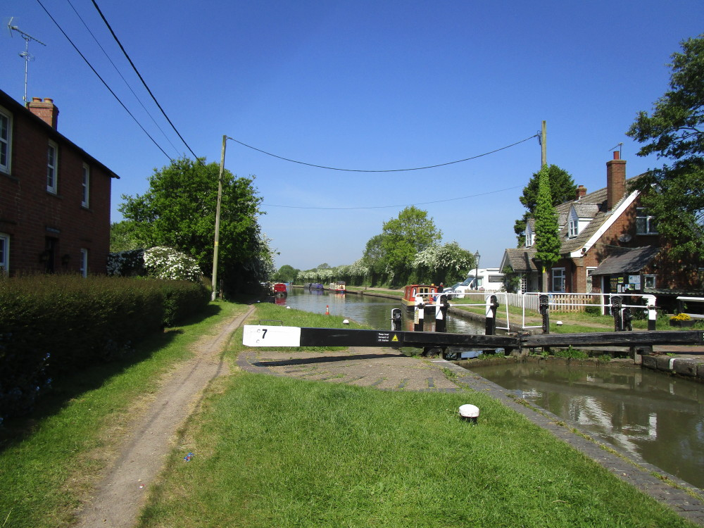 A5 canalside dog walk between Rugby and Northampton, Northamptonshire - Dog walks in Northamptonshire