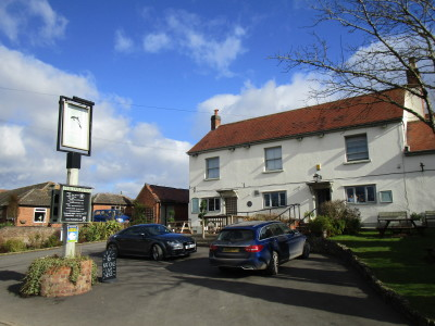 A44 rural dog walk and dog-friendly pub, Worcestershire - Driving with Dogs