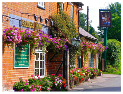 Rural dog walk and dog-friendly pub near Botley, Hampshire - Driving with Dogs