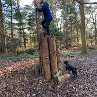 Woodlands, River and Garden dog walks at Cliveden, Buckinghamshire - IMG_0790.jpg