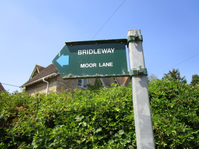 Dog-friendly pub, boutique B&B and dog walk near Witney, Oxfordshire - Driving with Dogs