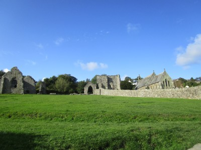 Ruined Abbey and dog-friendly cafe near Cardigan, Wales - Driving with Dogs