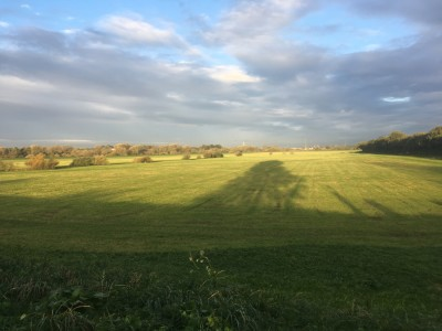 Best dog walk in York (River Ouse/Clifton Ings), Yorkshire - Driving with Dogs