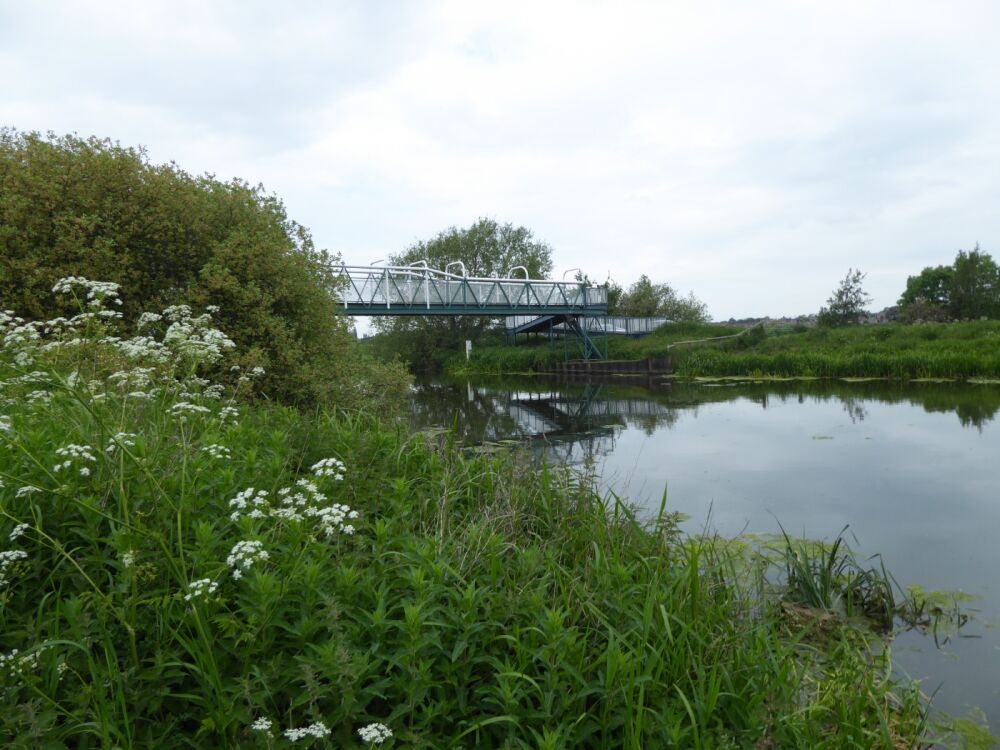 Waterside walk just five miles from Lincoln, Lincolnshire - Accessible dog walks near Lincoln