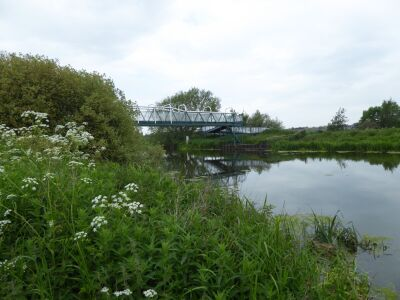 Waterside walk just five miles from Lincoln, Lincolnshire - Driving with Dogs